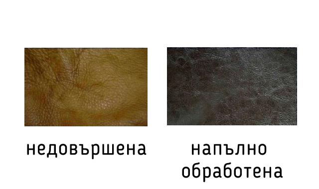 типове-естествена-кожа